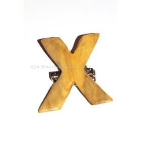Pin X