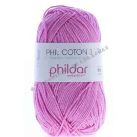 Phil Coton 3 Fucsia