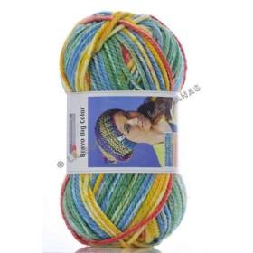 BRAVO BIG COLOR multicolor