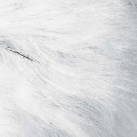 Lynx 111 Blanco
